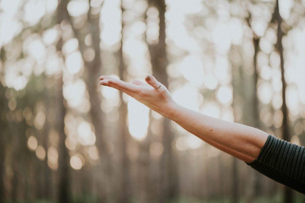 How to Maximise Your Free-ing Time Lifesum